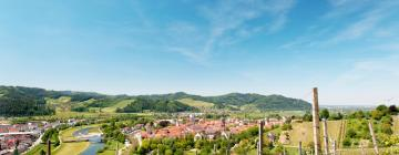 Hotels in Limbach