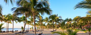 Aktivitäten in Playa del Carmen