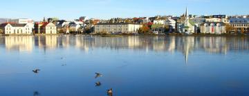 Things to do in Reykjavík
