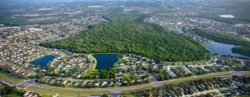 Things to do in Kissimmee