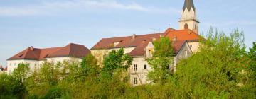 Hotels in Kranj