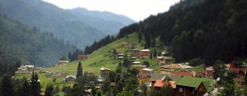 Hotels in Ayder Yaylasi
