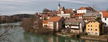 Hotels in Novo Mesto