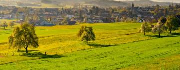 Hotels in Balsthal