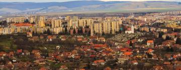 Hotels in Sfântu Gheorghe