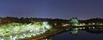 Hotels in Goyang