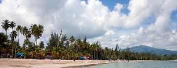 Hotels in Luquillo