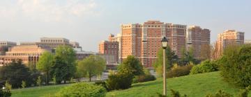 Hotels in Alexandria