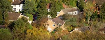 Hotels in Bickenhill
