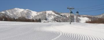 Hotels in Furano