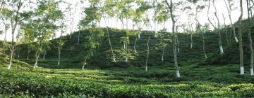 Hotels in Sylhet