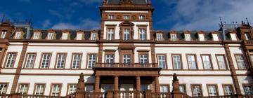Hotels in Hanau am Main