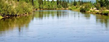 Activités à Fairbanks