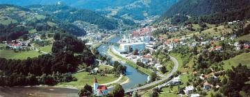 Hotels in Laško