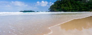 Hôtels à Bocas del Toro