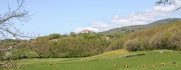 Hotels in Montieri