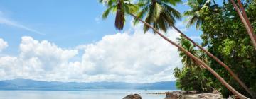 Hoteles en Savusavu