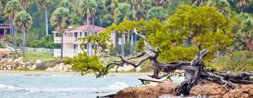 Hotels in Treasure Beach