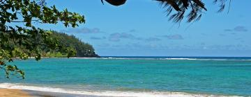 Hotels in Tanna Island