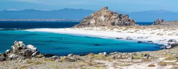 Hotels in Punta de Choros