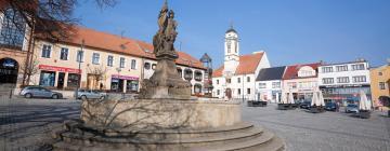 Hôtels à Uherský Brod