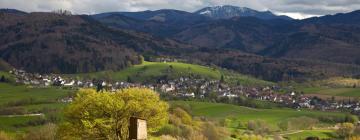 Отели в городе Oberwolfach