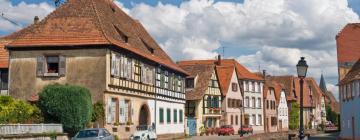 Hótel í Wissembourg