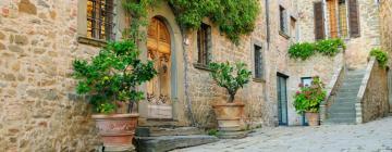 Hotell i Castellina in Chianti