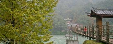 Отели в городе Дуцзянъянь