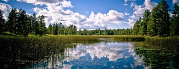 Hotels in Pinetop-Lakeside