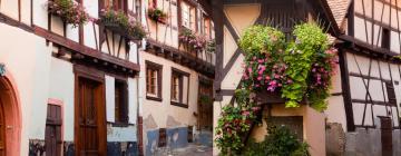 Hotels in Eguisheim