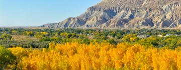 Hotels in Grand Junction