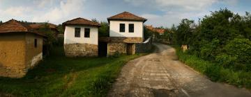Hotels in Pirot