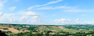 Hôtels à Cordes-sur-Ciel