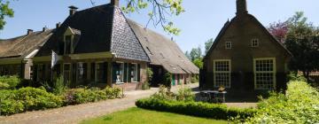 Hotels in Nieuw-Amsterdam