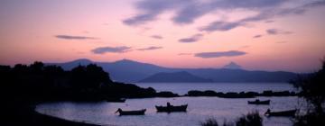 Hotels in Agia Anna Naxos