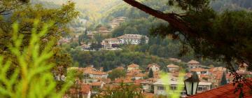 Hotels in Tryavna
