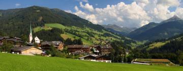 Hotels in Alpbach
