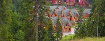 Hotels in Mykulychyn