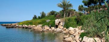 Hotels in Paralimni