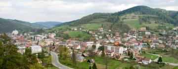 Hotels in Muszyna
