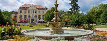 Hotels in Teplice