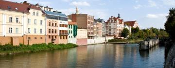Hotels in Opole