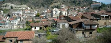 Hotels in Kakopetria