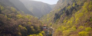 Hotels in Thale