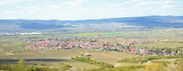 Hotels in Bad Krozingen