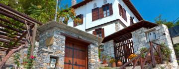 Hotels in Makrinitsa