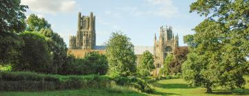 Hotels in Ely
