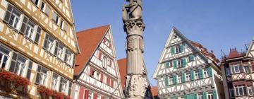 Hoteles en Herrenberg
