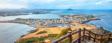 Hotels in Jeju